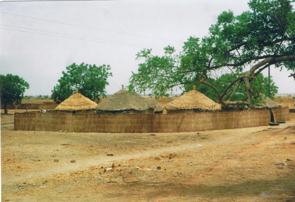 Tukulor Village 20 miles outside of Dakar