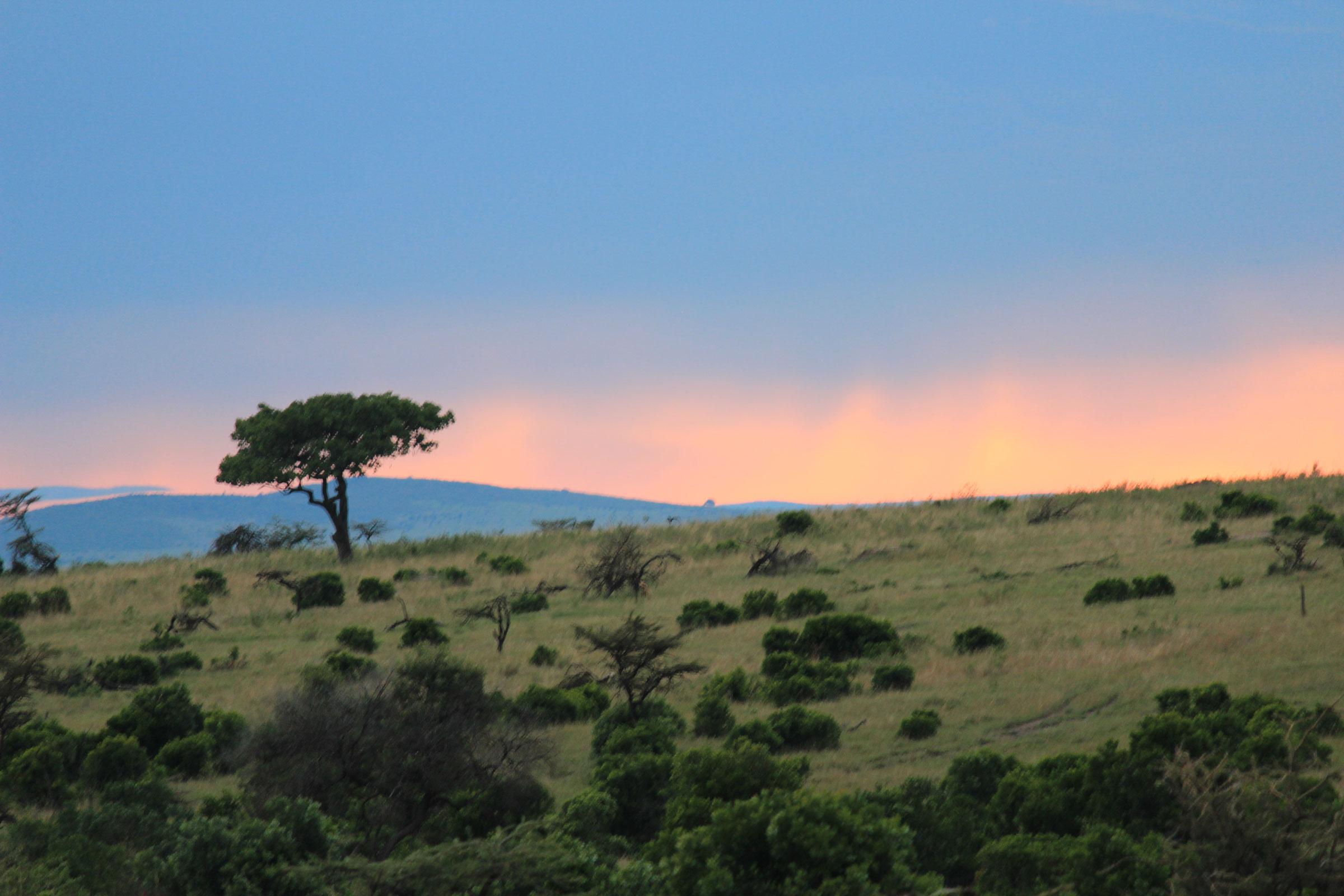 Maasai-Mara-KENYA_2400