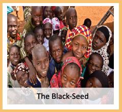 thumb-Black-Seed